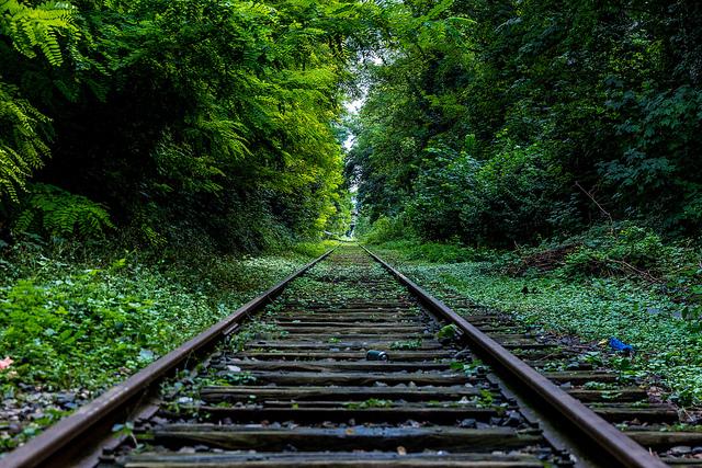 viaggio treno-15920831924_03a2f455fd_z