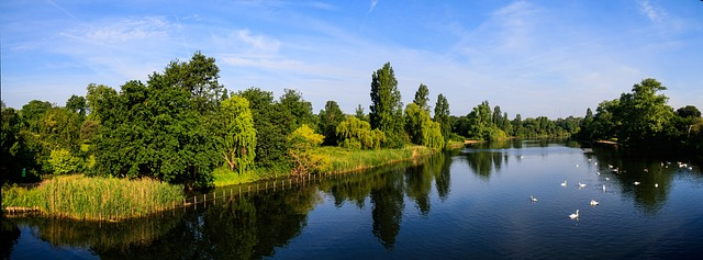 Londra- serpentine-hyde-park-1474501_640