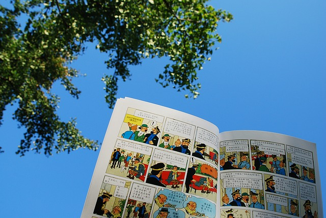 Bruxelles-the-adventures-of-tintin-1405310_640