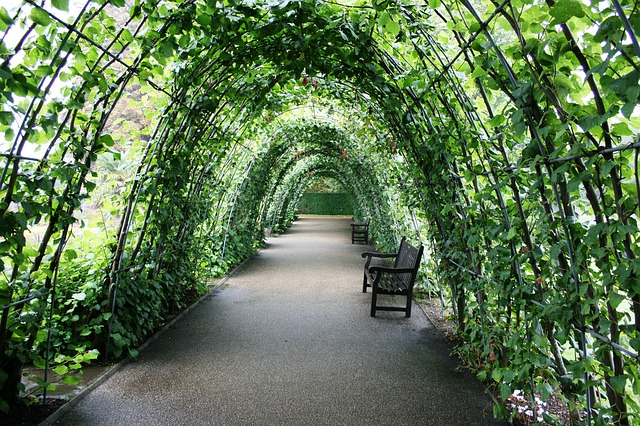 Londra-tunnel-of-plants-252820_640
