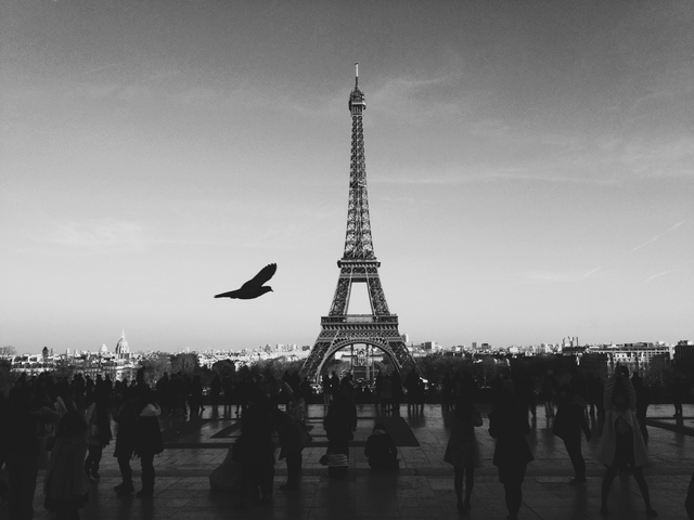 Parigi-Processed with VSCOcam with b5 preset
