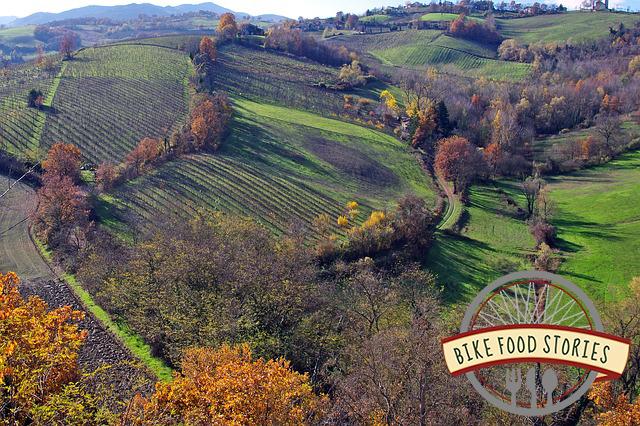 Parma4