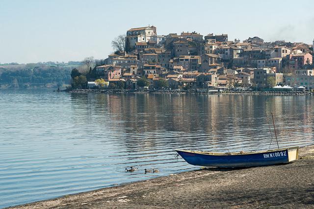 Laghi Laziali - Pino d'Amico