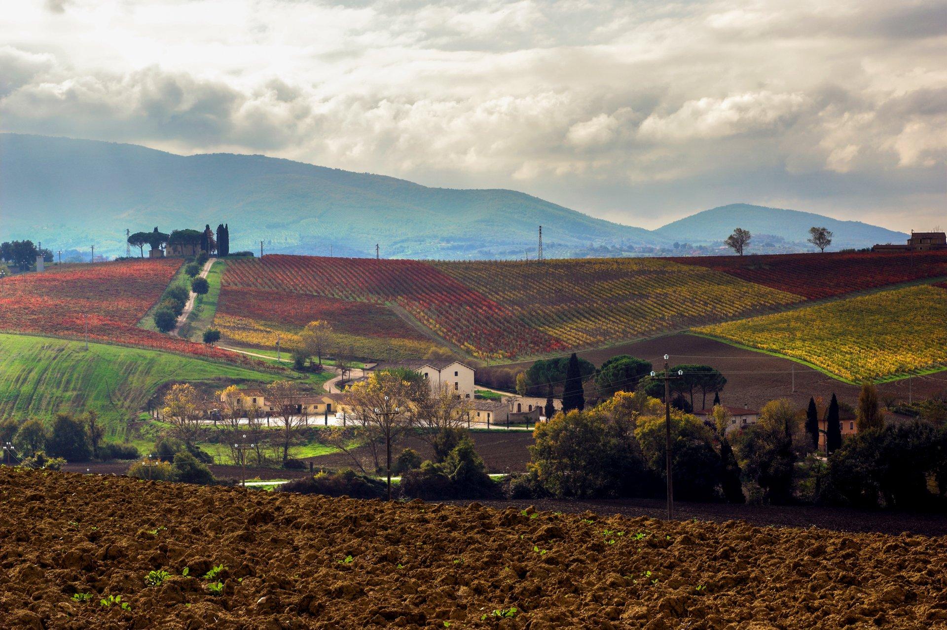 © Cantina Scacciadiavoli - Vista della Tenuta